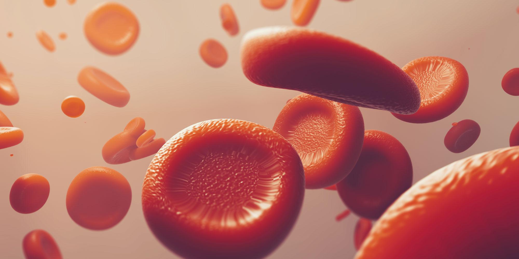 3d blood cells